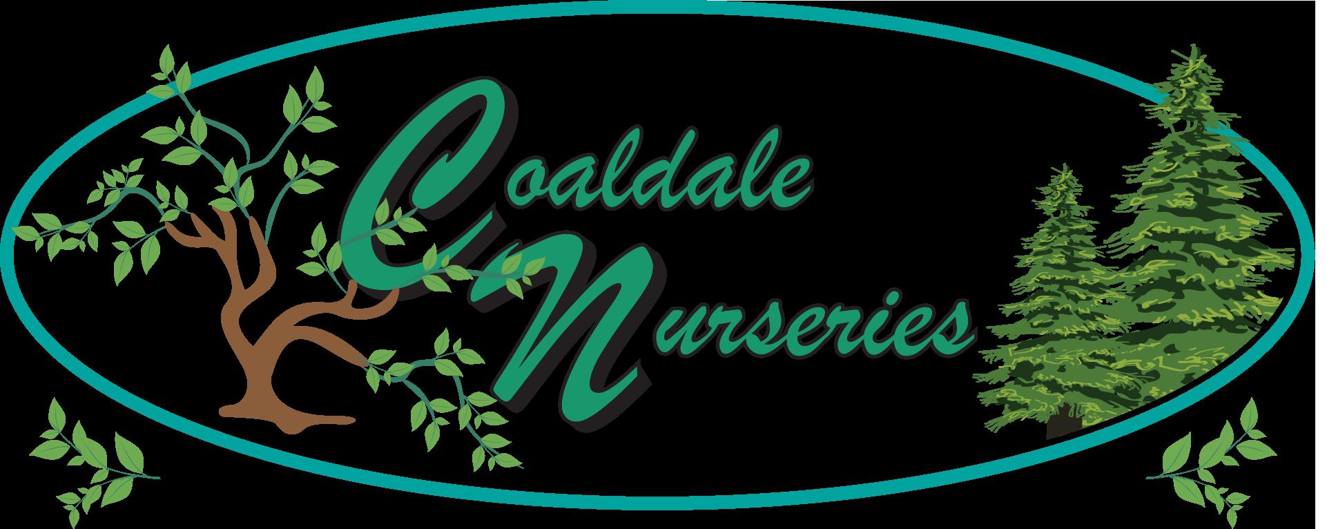 Coaldale Nurseries_Logo